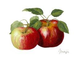 Peinture de Frederique Monge, publié avec l'aimable autorisation de l'artiste