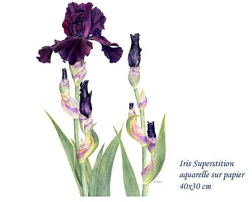 Avec l'aimable autorisation de l'artiste françoise piquet-vadon